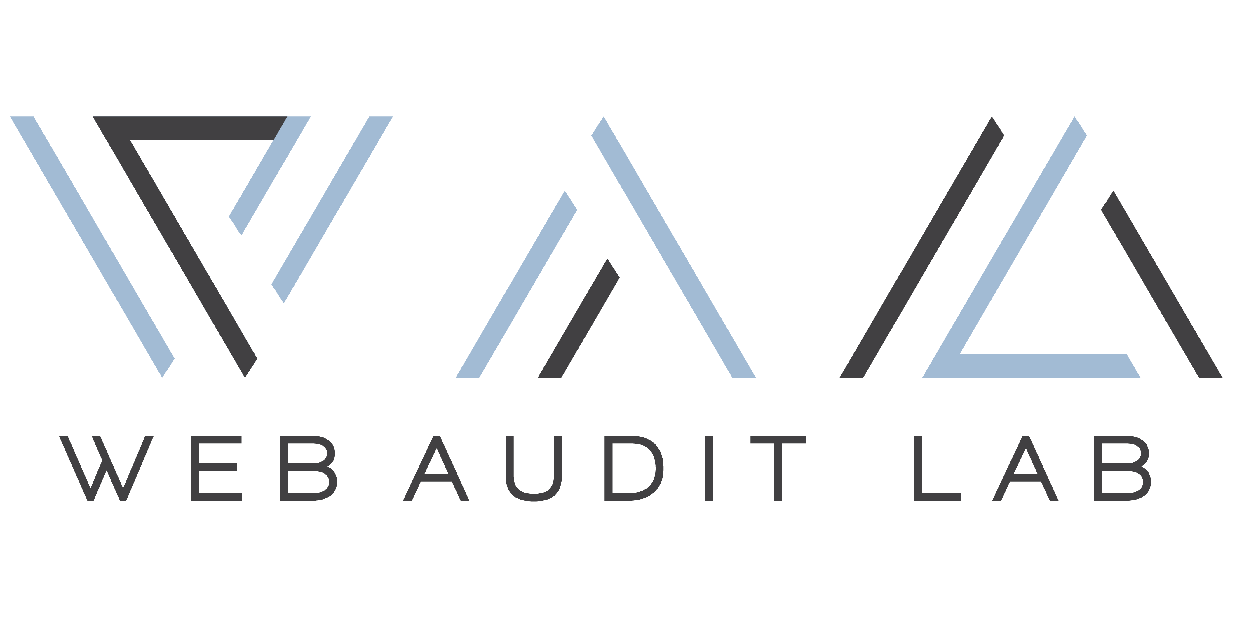 Web Audit Labs